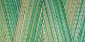 Seedlings - Star Mercerized Cotton Thread Variegated 1,200yd