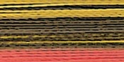 3CC Autumn - Rayon Super Strength Thread Variegated Colors 700yd