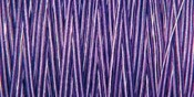Purple Passion - Natural Cotton Thread Variegated 876yd