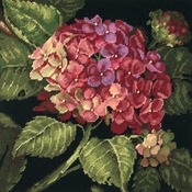"14""X14"" Stitched In Wool - Hydrangea Bloom Needlepoint Kit"