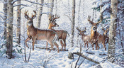 "18""X10"" 18 Count - Gold Collection Woodland Winter Counted Cross Stitch Kit"