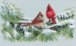 """15""""X9"""" 16 Count - Winter Cardinals Counted Cross Stitch Kit"""