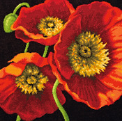 "14""X14"" Stitched In Wool & Thread - Red Poppy Trio Needlepoint Kit"