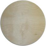"Circle 10"" - Baltic Birch Plaque"