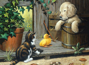 """Three Buddies - Junior Large Paint By Number Kit 15.25""""X11.25"""""""