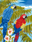 "Parrots - Junior Small Paint By Number Kit 8.75""X11.75"""