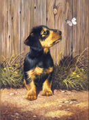 "Dachshund Puppy - Junior Small Paint By Number Kit 8.75""X11.75"""