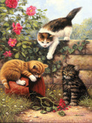 """Kittens At Play - Junior Small Paint By Number Kit 8.75""""X11.75"""""""