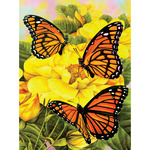 """Majestic Monarchs - Junior Small Paint By Number Kit 8.75""""X11.75"""""""