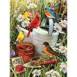 "Garden Birds - Junior Small Paint By Number Kit 8.75""X11.75"""