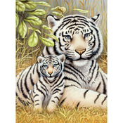 "White Tiger Pair - Junior Small Paint By Number Kit 8.75""X11.75"""
