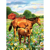 "Horse In Field - Junior Small Paint By Number Kit 8.75""X11.75"""
