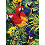 "Majestic Macaws - Junior Small Paint By Number Kit 8.75""X11.75"""