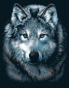 """Wolf - Silver Scraperfoil Kit 8""""X10"""""""