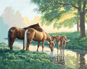 """Horses By A Stream - Paint By Number Kit 20""""X16"""""""