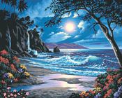 "Moonlit Paradise - Paint By Number Kit 20""X16"""