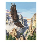 """Soaring Eagle - Paint By Number Kit 16""""X20"""""""