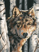 "Wolf Among Birches - Paint Works Paint By Number Kit 9""X12"""