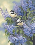 """Chickadees & Lilacs - Paint By Number Kit 11""""X14"""""""