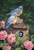 "Garden Bluebirds - Paint By Number Kit 14""X20"""