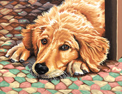 """Dog Tired - Paint By Number Kit 11""""X14"""""""