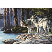 "Gray Wolves - Paint By Number Kit 20""X14"""