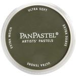 Bright Yellow Green Extra Dark - PanPastel Ultra Soft Artist Pastels 9ml