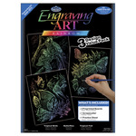 "Rainbow-Fish/Butterflies/Birds - Foil Engraving Art Kit Value Pack 8.75""X11.5"""