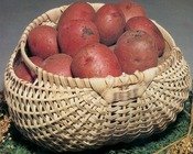 "Potato Basket 7""X12""X12"" - Blue Ridge Basket Kits"