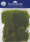 Green - Sheet Moss 2oz/Pkg