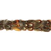 "Natural Pheasant - Feather Ribbon 1.75""X14"" 1/Pkg"