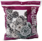 White Tipped Red Pine Cones 7oz/Pkg