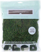 Preserved Mood Moss 112.5 Cubic Inches
