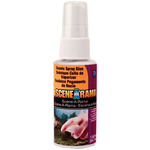 Scenic Spray Glue(TM) 2 fluid ounces