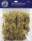 Moss Green - Reindeer Moss 2oz/Pkg
