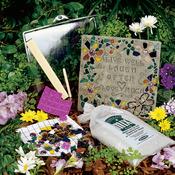 Inspiration - Mosaic Stepping Stone Kit