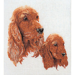 "Spaniels On Aida Counted Cross Stitch Kit-11-3/4""X15-3/4"" 12 Count"