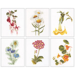 "6-3/4""X8"" 18 Count Set Of 6 - Floral Studies 4 On Aida Counted Cross Stitch Kit"
