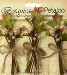 Peach Sugared Berry Clusters - Botanica - Petaloo