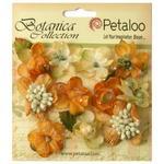Gold/Sienna Sugared Mini Blooms - Botanica - Petaloo