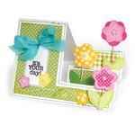 Birthday - Sizzix Clear Stamps By Stephanie Barnard