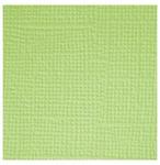 Limeade  Textured 12x12 Cardstock - Doodlebug