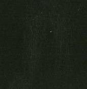 Beetle Black  Textured 12x12 Cardstock - Doodlebug