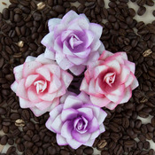 Alabaster Mulberry Paper Flowers - Kindled - Prima