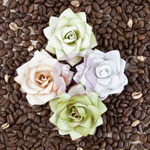 Lush Mulberry Paper Flowers - Kindled - Prima