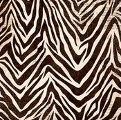 Jungle Paper - Safari - Bo Bunny
