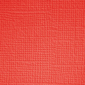 Ladybug  Textured 12x12 Cardstock - Doodlebug