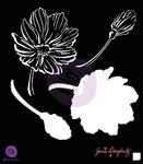 Anenome 6 x 6 Stencil - Bloom - Prima