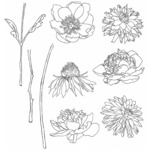 Flower Garden - Tim Holtz Cling Rubber Stamp Set