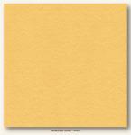Wildflower Honey Heavyweight My Colors Cardstock - My Minds Eye